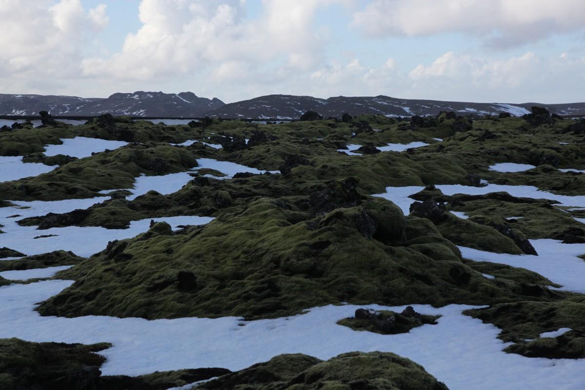 Zdjęcia: Tvibollahraun, Góry Błękitne, Pola lawowe, ISLANDIA