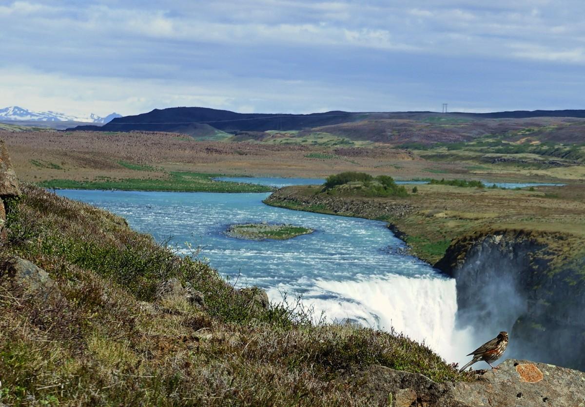 Zdjęcia: Gullfoss, Kanyon na rzece Hvíta, Nad wodospadem, ISLANDIA