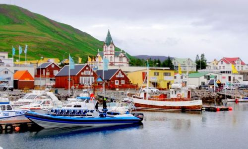 ISLANDIA / północ Islandii / Husavik / Husavik
