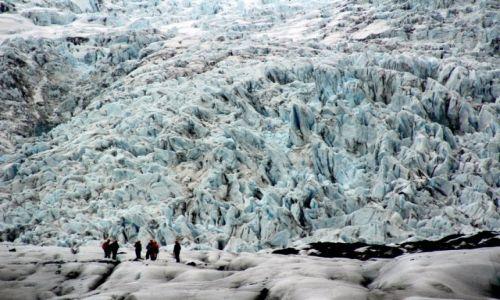 ISLANDIA / Południe Islandii / Park Narodowy Skaftafell / U stop lodowca