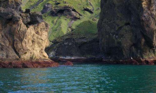 Zdjęcie ISLANDIA / Wyspy Westmanów / Wyspa Heimaey / Koloryt wybrzeża