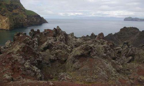 Zdjęcie ISLANDIA / Wyspy Westmanów / Wyspa Heimaey / Rozczochrany krajobraz
