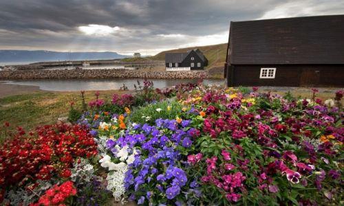Zdjęcie ISLANDIA / Skagafjörður-Sysla / Hofsós / Hofsós