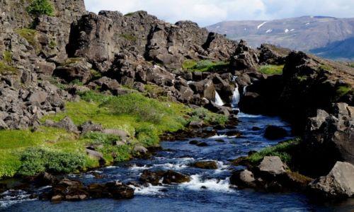 Zdjecie ISLANDIA / zach Islandia / Golden Circle / Park Narodowy Pngvellir