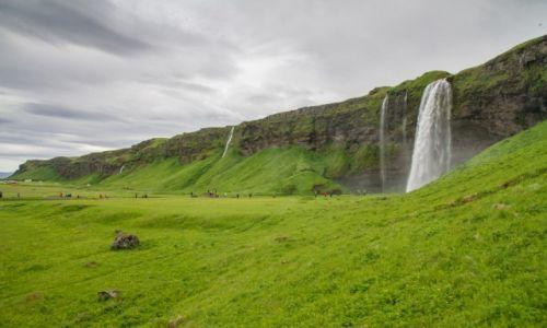 Zdjecie ISLANDIA / Islandia południowa / Islandia południowa / Seljandfoss