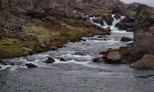 Zdjęcie ISLANDIA / Południowa Islandia / Park Narodowy Thingvellir / Park Narodowy Thingvellir
