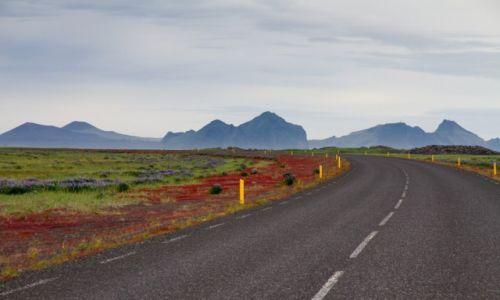Zdjecie ISLANDIA / Islandia  / Islandia południowa / Islandia