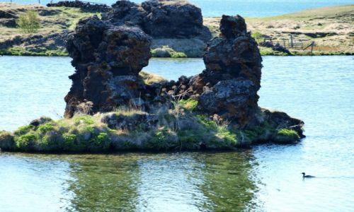 Zdjęcie ISLANDIA / Północna Islandia / jezioro Myvatn / Jezioro Myvatn