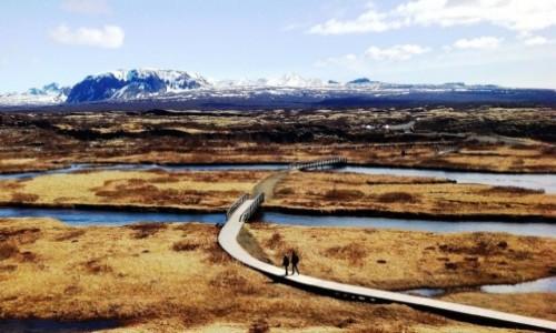 Zdjecie ISLANDIA / Islandia / Islandia / Islandzki krajobraz