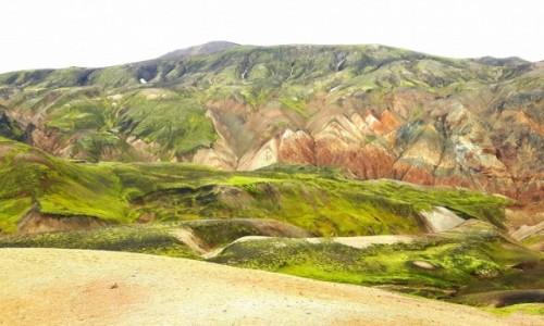 Zdjecie ISLANDIA / Landmannlaugar / Landmannlaugar / Paleta gorskich barw