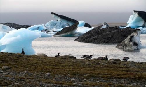 Zdjecie ISLANDIA /  jezioro w południowej Islandii / Jökulsárlón / Natura na wycią