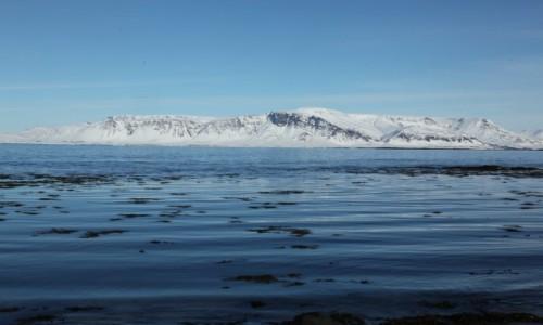 Zdjęcie ISLANDIA / Reykjavik / Seltjarnarnes / Góra Esja