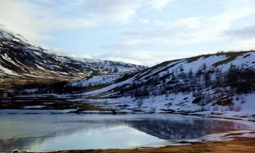 Zdjęcie ISLANDIA / Reykjavik / Góry Esja  / Po drodze