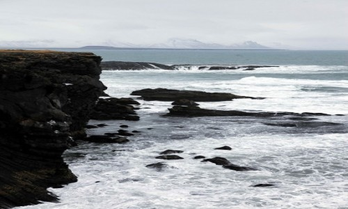 ISLANDIA / Półwysep Snæfellsnes / Arnarstapi / Klif