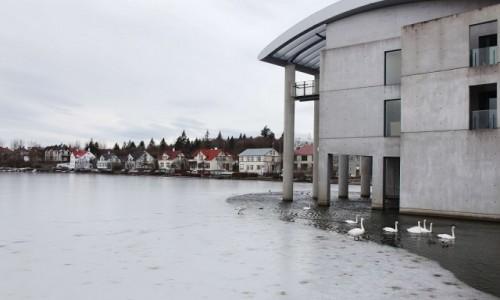 Zdjecie ISLANDIA / Reykjavík / Stare miasto / Z widokiem na jezioro