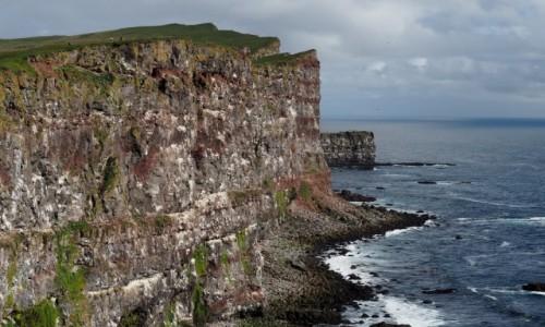 Zdjecie ISLANDIA / Fiordy zachodnie / Klify Latrabjarg / Klif