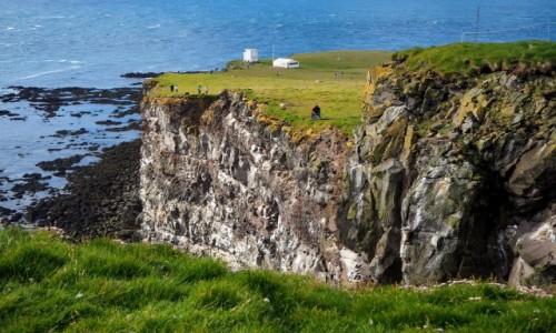 Zdjęcie ISLANDIA / Fiordy zachodnie / Klify Latrabjarg / Zielone klify