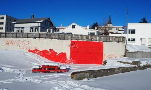 Zdjęcie ISLANDIA / zachodnia  Islandia / Borgarnes / Kontrasty