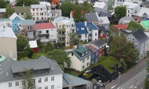 Zdjecie ISLANDIA / Reykjawik / Reykjawik / Zielony domek w stolicy
