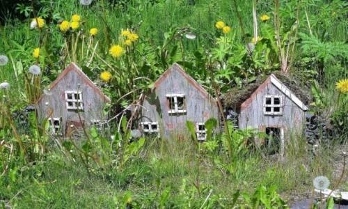 Zdjecie ISLANDIA / Wschodnie fiordy / Obokosady domków torfowych / Domki elfów