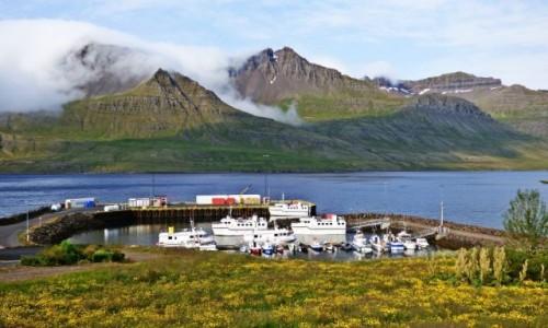 Zdjecie ISLANDIA / Islandia wschodnia / Stöðvarfjörður / Islandia - kraina tysiąca planet