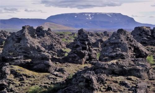 Zdjecie ISLANDIA / Północno-wschodnia część wyspy / Lawowy labirynt / Pola lawowe w okolicy Mývatn