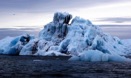 ISLANDIA / południe wyspy / Rejs po zatoce lodowcowej / Góry lodowe w Zatoce Jökulsárlón