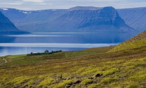 Zdjecie ISLANDIA / Fjordy Zachodnie / okolice / W drodze do Latrabjarg