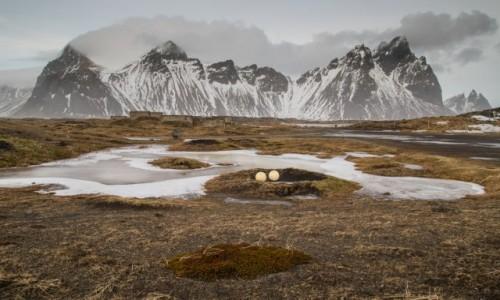 Zdjecie ISLANDIA / Islandia południowa / Vestrahorn / zimowa Islandia