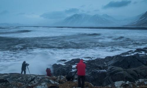Zdjecie ISLANDIA / Islandia wschodnia / Hvalnes Lighthouse / zimowa Islandia
