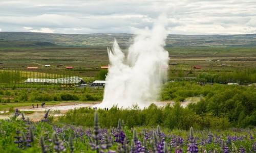 Zdjecie ISLANDIA / Okolice Reykjaviku / Pole termalne Geysir / Gejzer Strokkur
