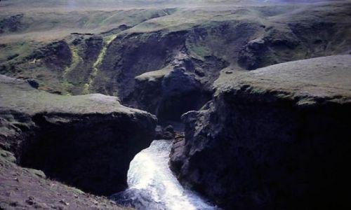 ISLANDIA / Kanion Torfahlaup / Islandia / Miś i człowiek