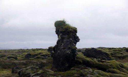 Zdjęcie ISLANDIA / Południowa Islandia / Okolice Vik / Skamieniały Trol