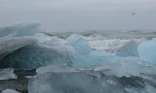 Zdjecie ISLANDIA / Południowa Islandia / Ujście rzeki Jokulsa a Breidamerkursandi / Plaża nad oceanem