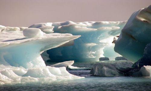 Zdjecie ISLANDIA / poludnie / zatoczka lodowa / uczta lodowa