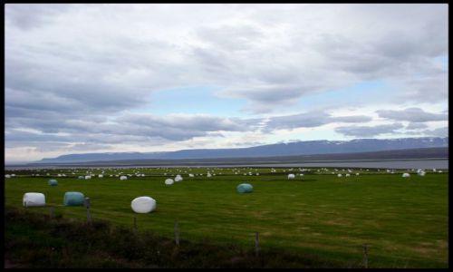 Zdjecie ISLANDIA / - / Glaumbær / Północna Islandia