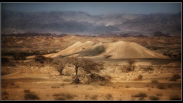 Zdjęcia: Pustynia Judzka, Izrael, Pustynia Judzka, IZRAEL