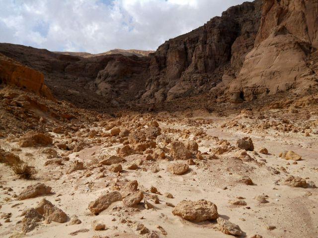 Zdjęcia: Negev Desert, pustynia Negev, IZRAEL