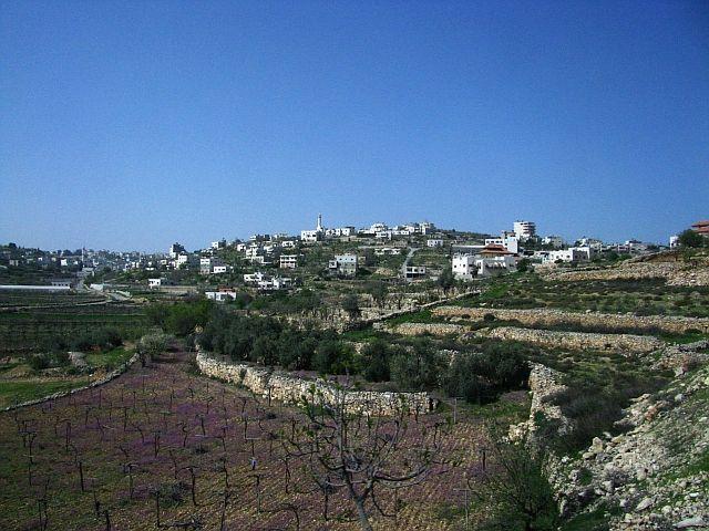 Zdjęcia: trasa Jerozolima Hebron, Zachodni Brzeg, Wzgórza Judei, IZRAEL