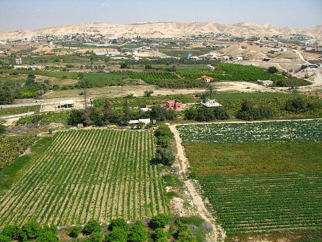 Zdjęcia: Jerycho, Zachodni Brzeg, pola uprawne, IZRAEL