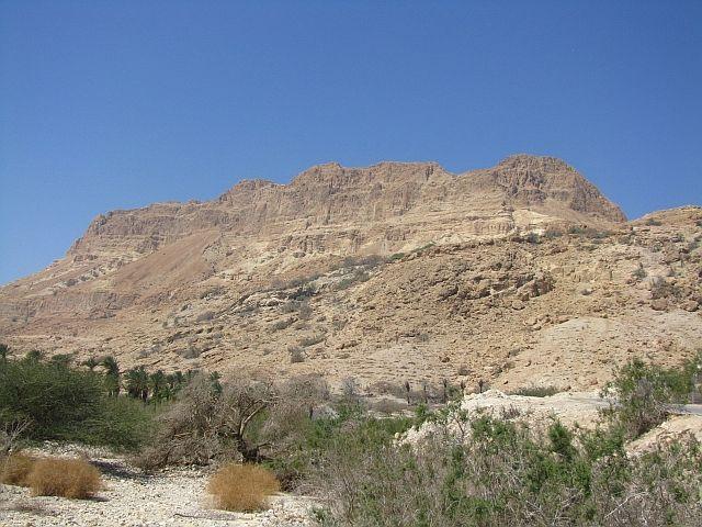 Zdjęcia: Ein Gedi, Morze Martwe, Park Narodowy Ein Gedi, IZRAEL