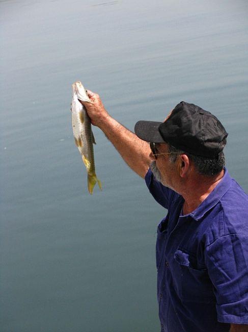 Zdjęcia: jezioro Genezaret, Galilea, połów ryb, IZRAEL