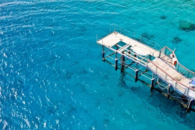 Zdjęcia: Ejlat, Morze Czerwone, ejlat delfinarium, IZRAEL