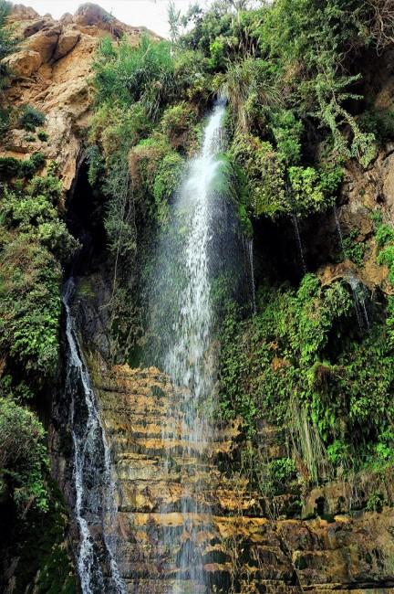 Zdjęcia: Ein Gedi, Morze Martwe, Wodospad Davida, IZRAEL