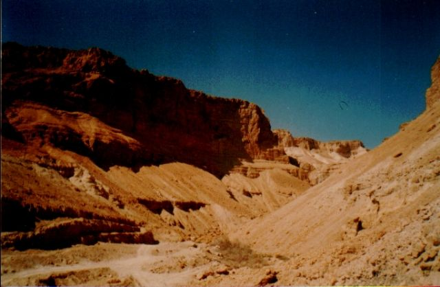 Zdjęcia: pustynia, Pustynia Negev, IZRAEL