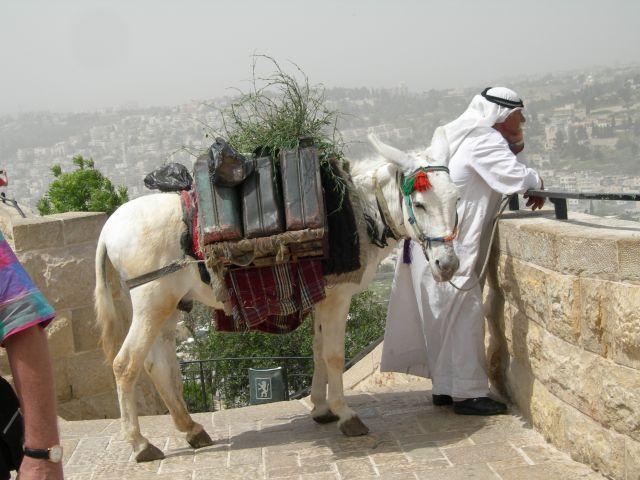 Zdjęcia: jerozolima, Mobilna stacja paliw, IZRAEL