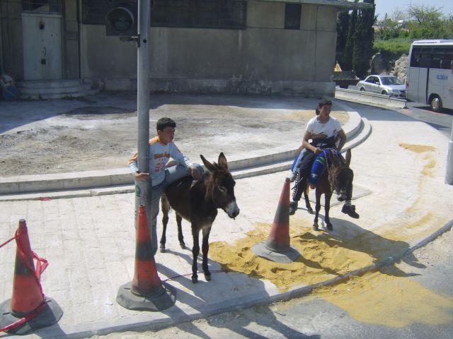 Zdjęcia: W mieściee, Jerozolima, Środek transportu, IZRAEL
