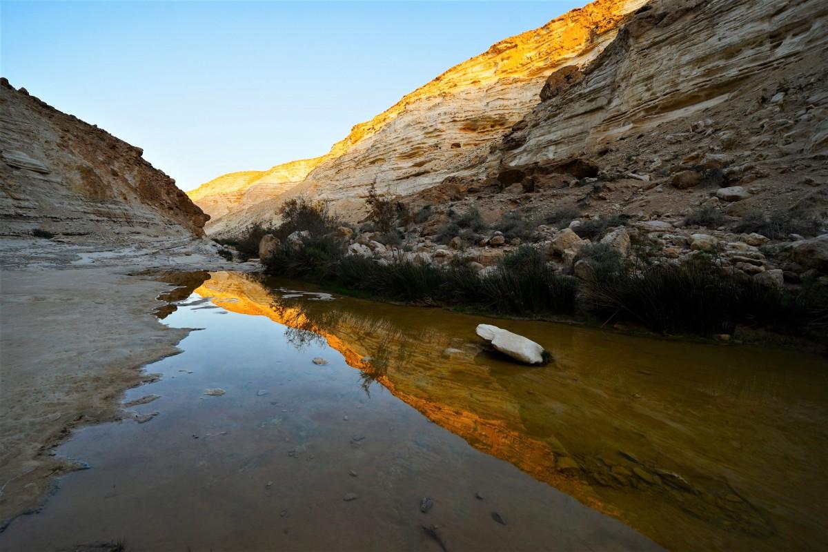 Zdjęcia: Avdat Park, Pustynia Negev, W drodze do źródła, IZRAEL