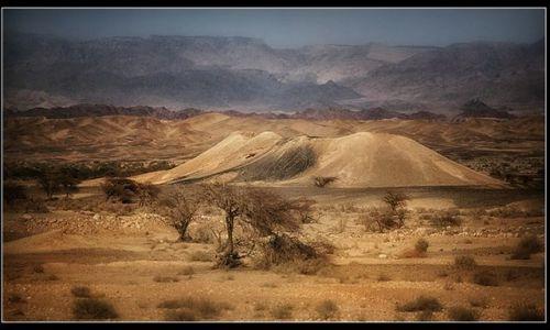 Zdjęcie IZRAEL / Izrael / Pustynia Judzka / Pustynia Judzka