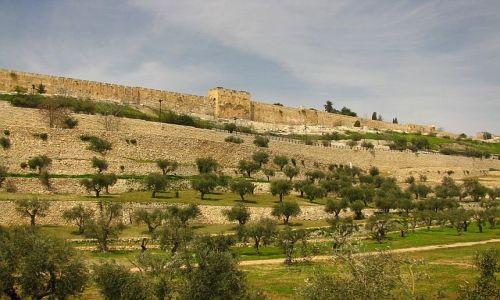IZRAEL / Judea / Jerozolima / Wzgórze Świątynne